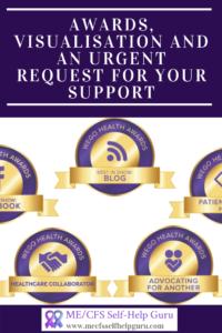 pin showing award badges